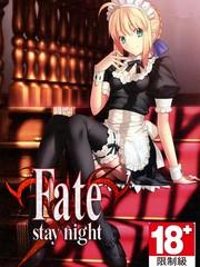 Fate-staynight-18x