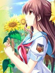 车轮之国-向日葵的少女