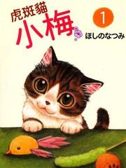 虎斑猫小梅